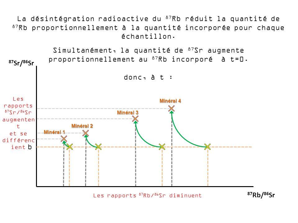 La désintégration radioactive du 87 Rb réduit la quantité de 87 Rb proportionnellement à la quantité incorporée pour chaque échantillon. Simultanément
