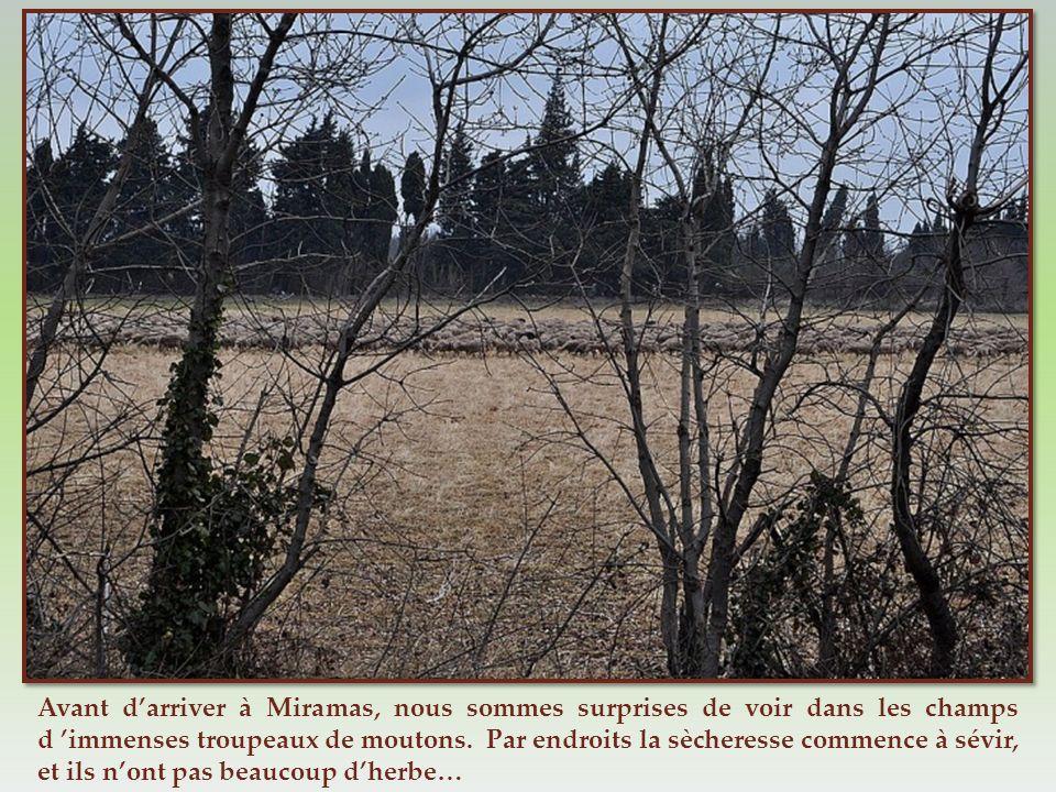 Ce nest plus sur les bords de la route, mais en plein village dEyguières, sur la grand-place au centre du rond-point, que trône cette statue de Notre-