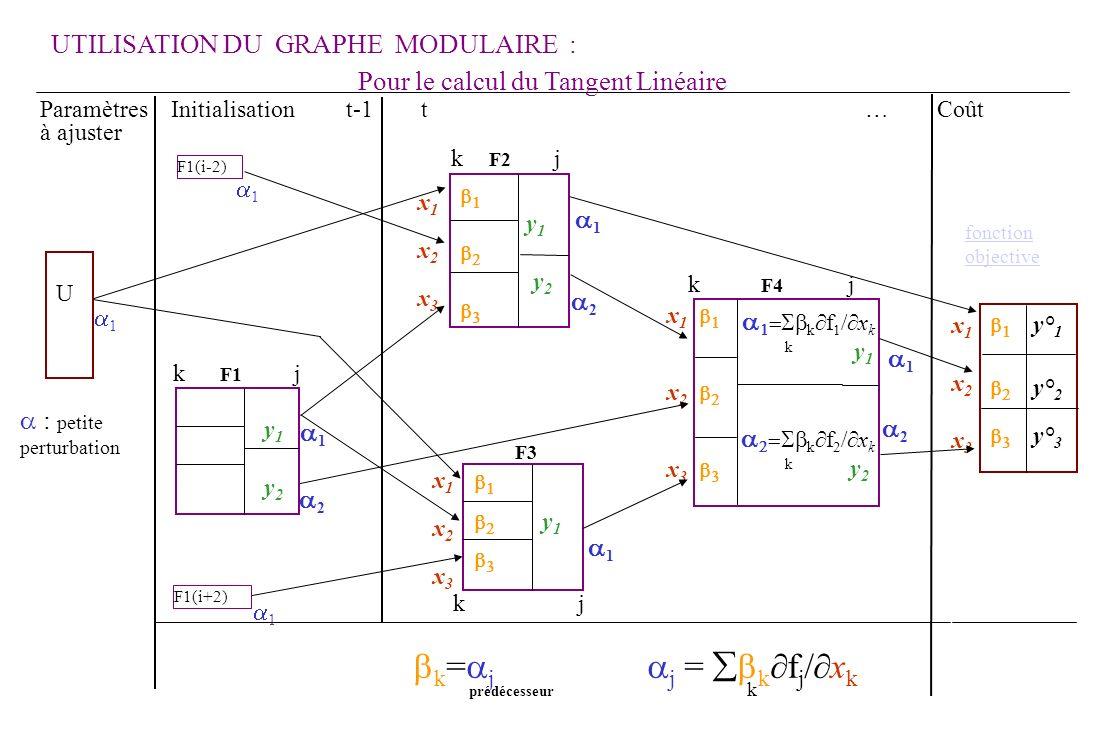 k j 2 1 1 2 1 1 1 2 x1x2x3x1x2x3 1 y 1 y 2 k f 1 / x k k y 1 k f 2 / x k k y 2 y 1 x 1 x 2 x 3 y° 1 y° 2 y° 3 k F2 j F3 y 1 y 2 U x1x2x3x1x2x3 F1(i-2) F1(i+2) 1 x1x2x3x1x2x3 Pour le calcul du Tangent Linéaire Paramètres Initialisation t-1 t … Coût à ajuster k = j j = k f j / x k prédécesseur k k F4 j k F1 j UTILISATION DU GRAPHE MODULAIRE : fonction objective : petite perturbation Graphe modulaire TANGENT