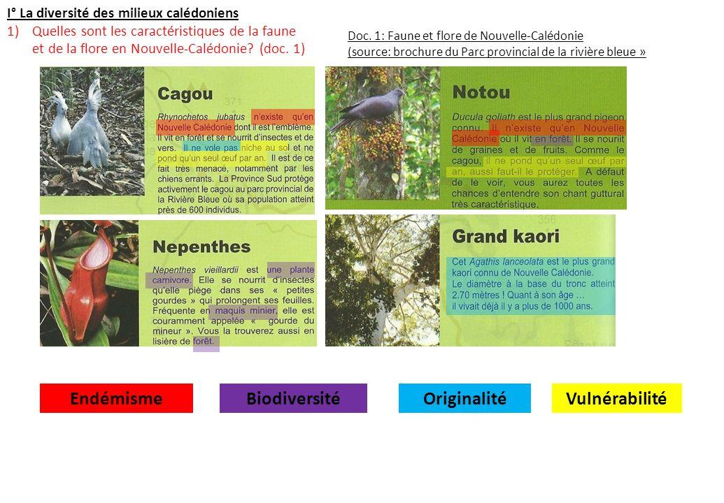 I° La diversité des milieux calédoniens 1)Quelles sont les caractéristiques de la faune et de la flore en Nouvelle-Calédonie? (doc. 1) Doc. 1: Faune e