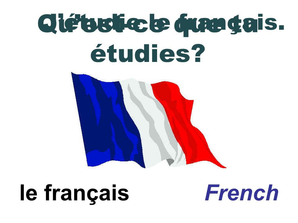 le français French Jétudie le français. Quest-ce que tu étudies?