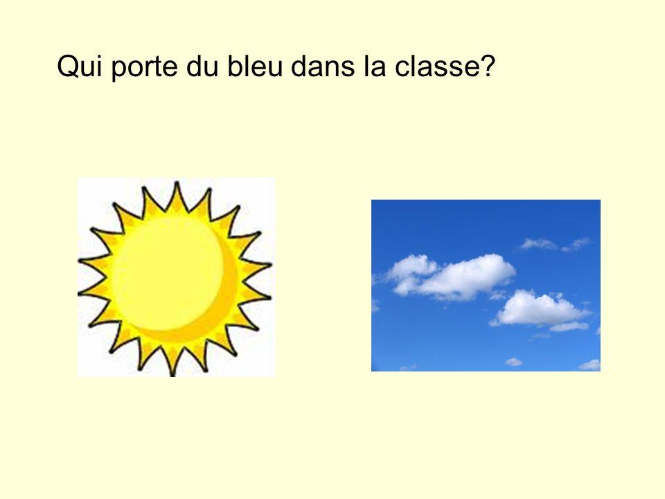 Qui porte du bleu dans la classe?