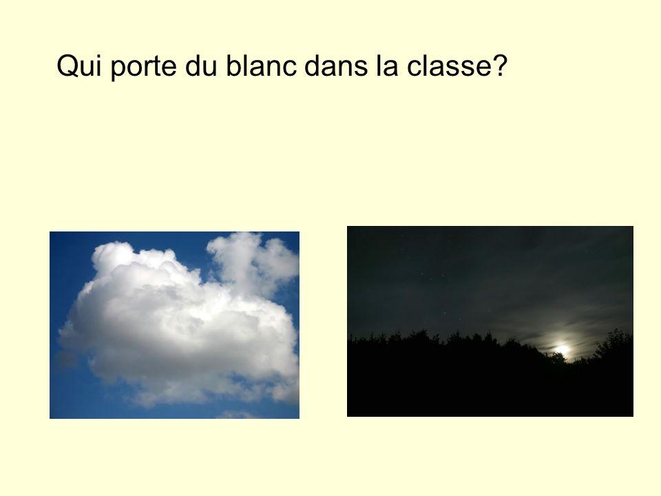 Qui porte du blanc dans la classe?