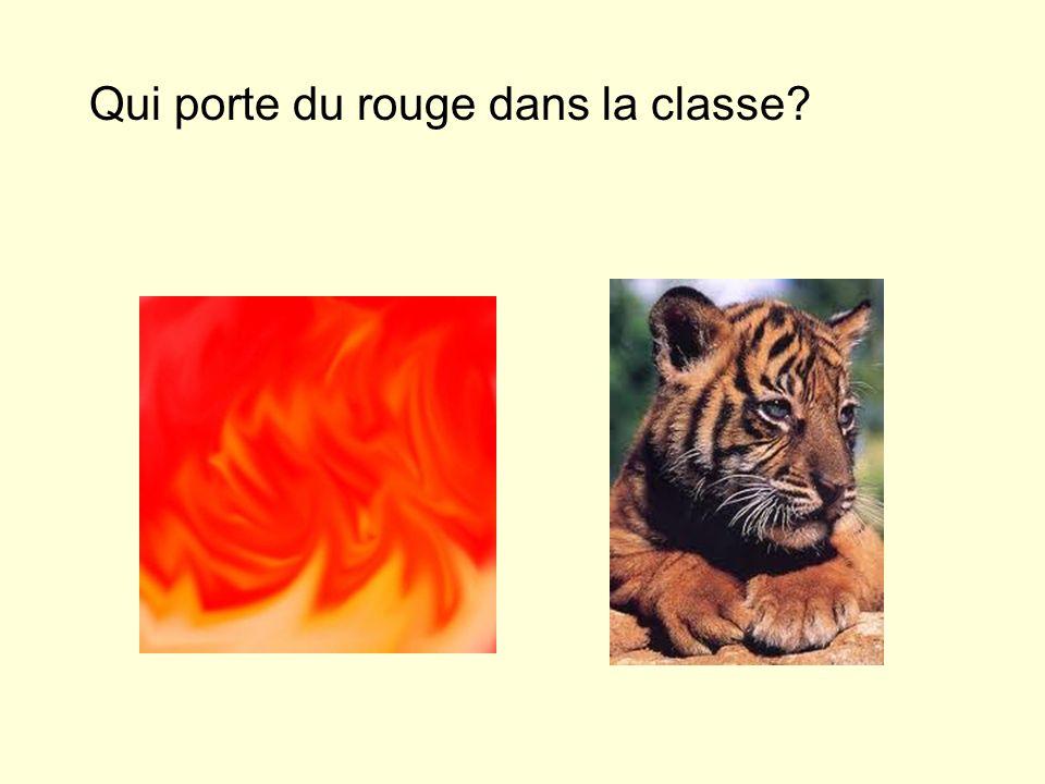 Qui porte du rouge dans la classe?