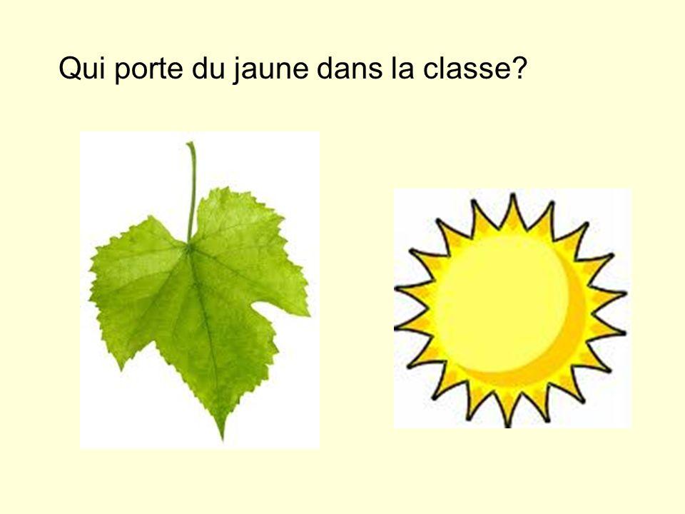 Qui porte du jaune dans la classe?