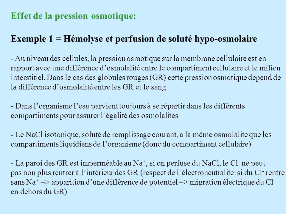 Effet de la pression osmotique: Exemple 1 = Hémolyse et perfusion de soluté hypo-osmolaire - Au niveau des cellules, la pression osmotique sur la memb