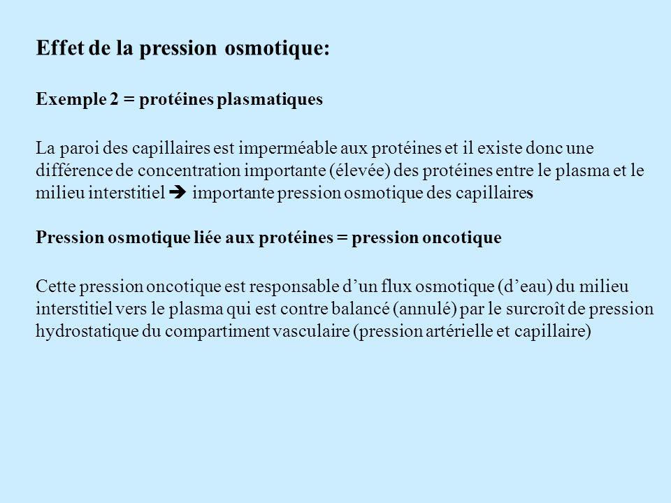 Effet de la pression osmotique: Exemple 2 = protéines plasmatiques La paroi des capillaires est imperméable aux protéines et il existe donc une différ
