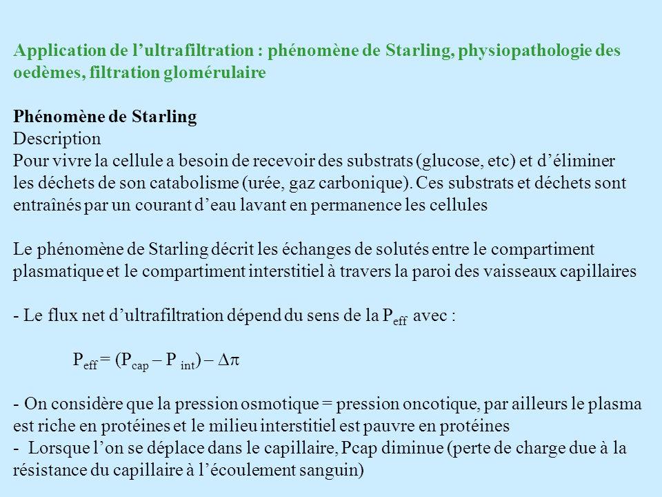 Application de lultrafiltration : phénomène de Starling, physiopathologie des oedèmes, filtration glomérulaire Phénomène de Starling Description Pour