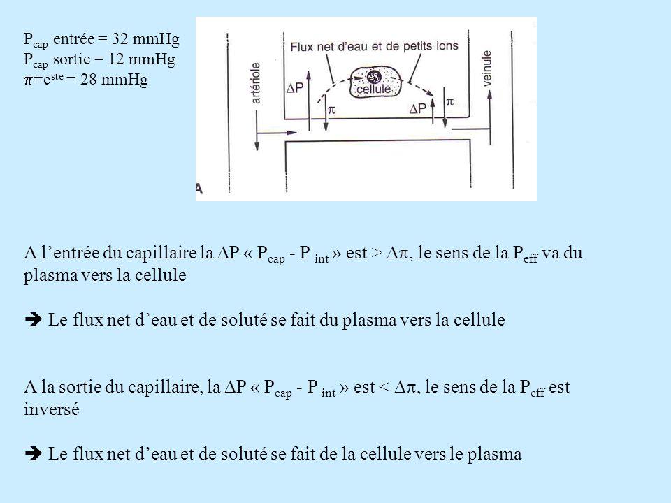 P cap entrée = 32 mmHg P cap sortie = 12 mmHg =c ste = 28 mmHg A lentrée du capillaire la P « P cap - P int » est >, le sens de la P eff va du plasma