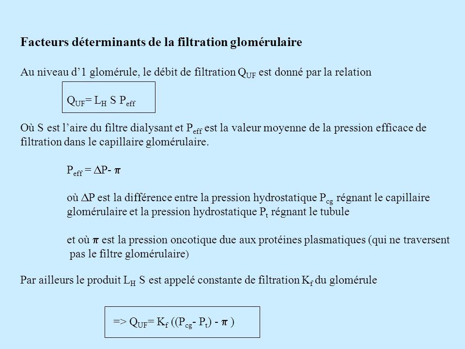 Facteurs déterminants de la filtration glomérulaire Au niveau d1 glomérule, le débit de filtration Q UF est donné par la relation Q UF = L H S P eff O