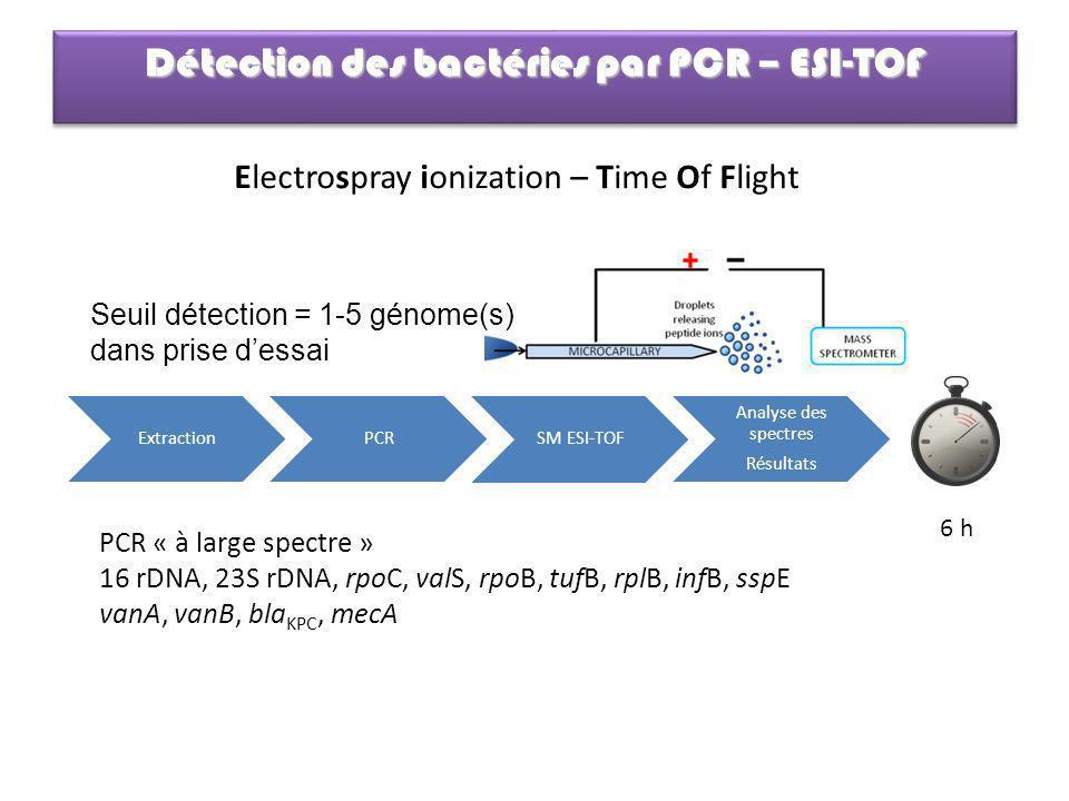 Détection des bactéries par PCR – ESI-TOF Electrospray ionization – Time Of Flight ExtractionPCR SM ESI-TOF Analyse des spectres Résultats 6 h PCR « à