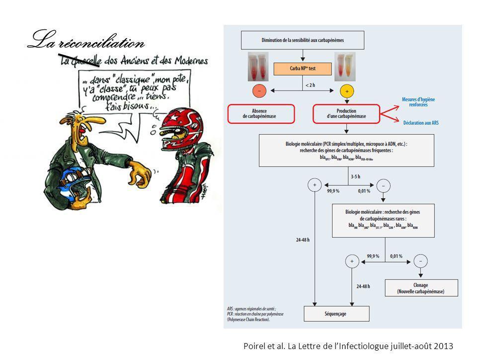 Poirel et al. La Lettre de lInfectiologue juillet-août 2013 La réconciliation