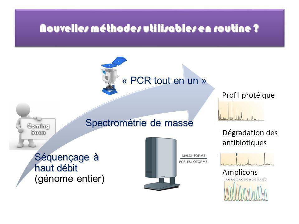 Nouvelles méthodes utilisables en routine ? Amplicons Dégradation des antibiotiques Profil protéique Séquençage à haut débit Séquençage à haut débit (