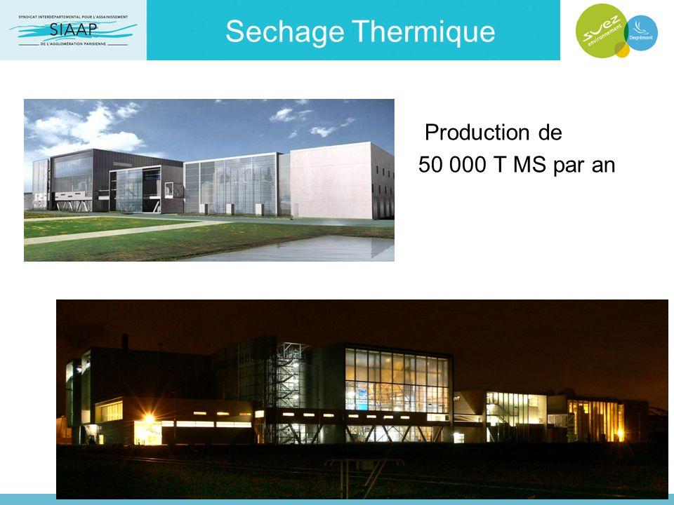 Sechage Thermique Production de 50 000 T MS par an