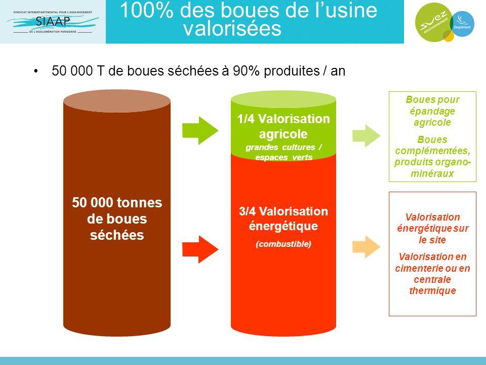 100% des boues de lusine valorisées 50 000 T de boues séchées à 90% produites / an Boues pour épandage agricole Boues complémentées, produits organo-