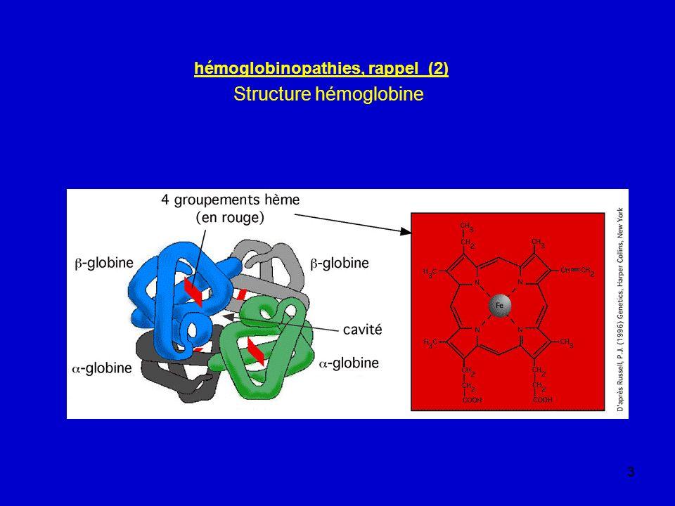 4 hémoglobinopathies, rappel (3) au cours de la vie fœtale, surtout Hb F ( 2 2) commutation vers progressive 95 % à 6 mois, finie à 6 ans à la naissance Hb A : 2 2 : 0,1-0,5 % HbA2 : 2 2 : 10-30 % HbF : 2 2 : 70-90 % (déficit visible dès naissance, après plusieurs mois) à lâge adulte HbA 2 2 : > 97% dt 4- 5 % Hb glycosylée HbA2 2 2 : 3,5 % HbF 2 2 : < 1,5 %