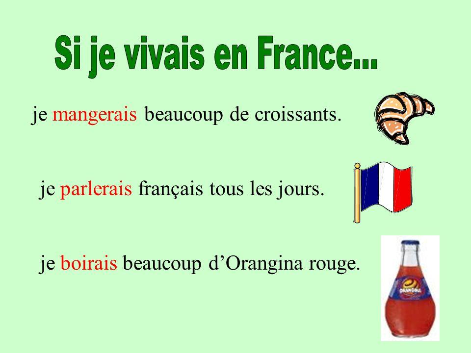 je mangerais beaucoup de croissants. je parlerais français tous les jours. je boirais beaucoup dOrangina rouge.