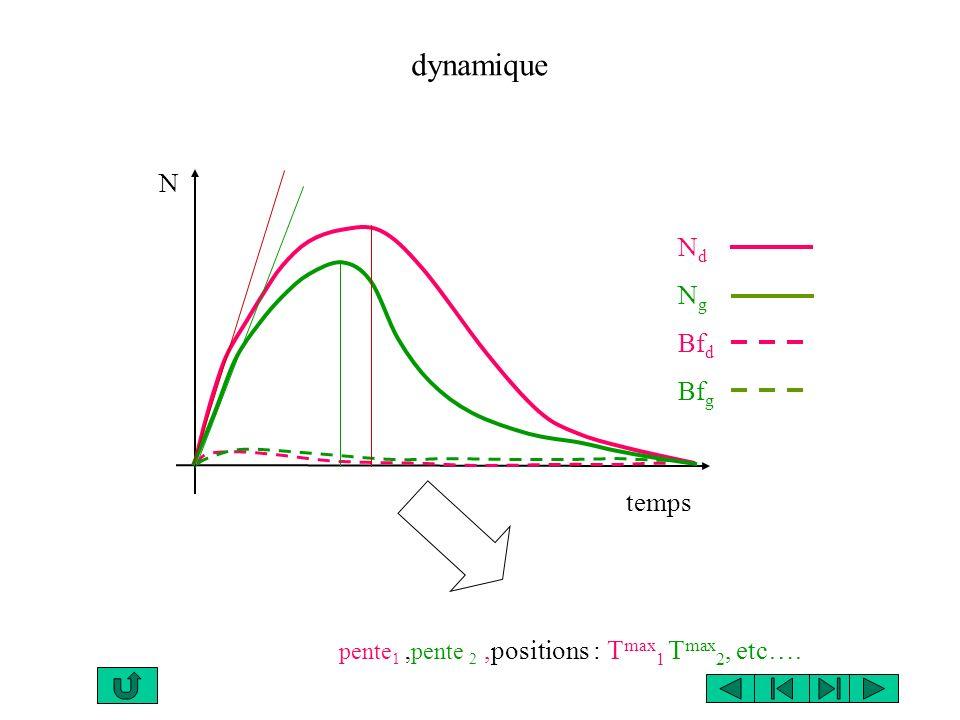 temps dynamique N N d N g Bf d Bf g pente 1,pente 2,positions : T max 1 T max 2, etc….