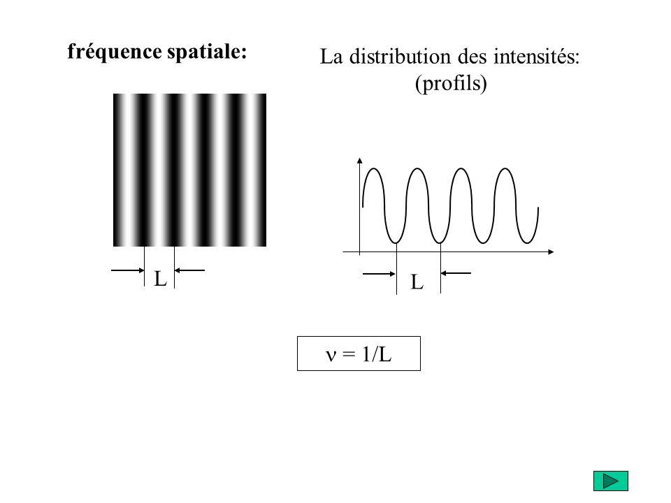 fréquence spatiale: = 1/L L L La distribution des intensités: (profils)