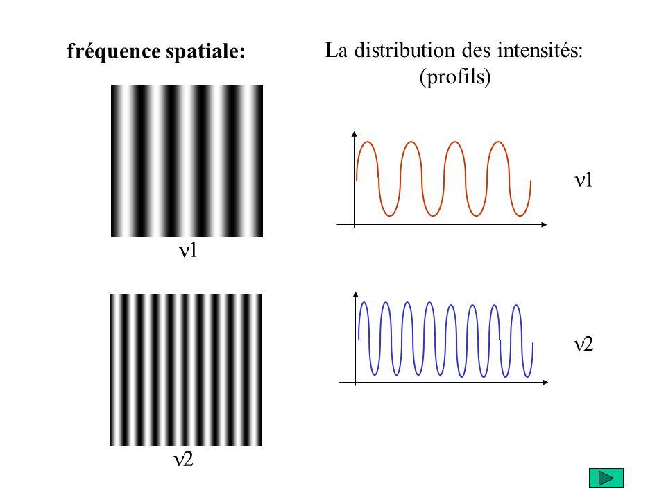 fréquence spatiale: 1 2 1 2 La distribution des intensités: (profils)