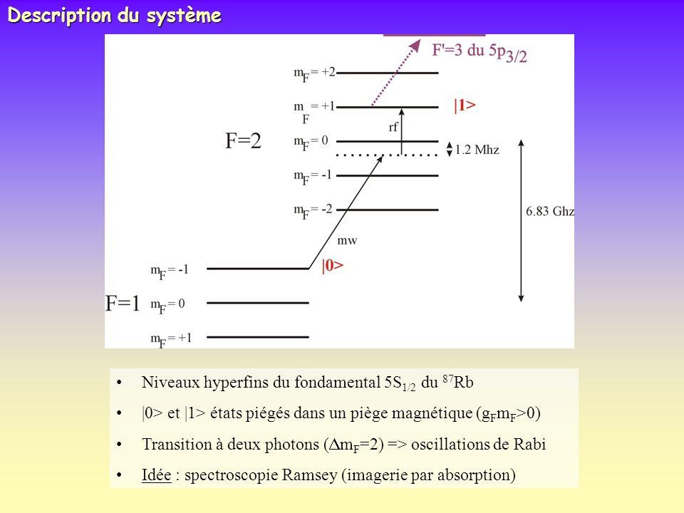 Description du système Niveaux hyperfins du fondamental 5S 1/2 du 87 Rb  0> et  1> états piégés dans un piège magnétique (g F m F >0) Transition à deu