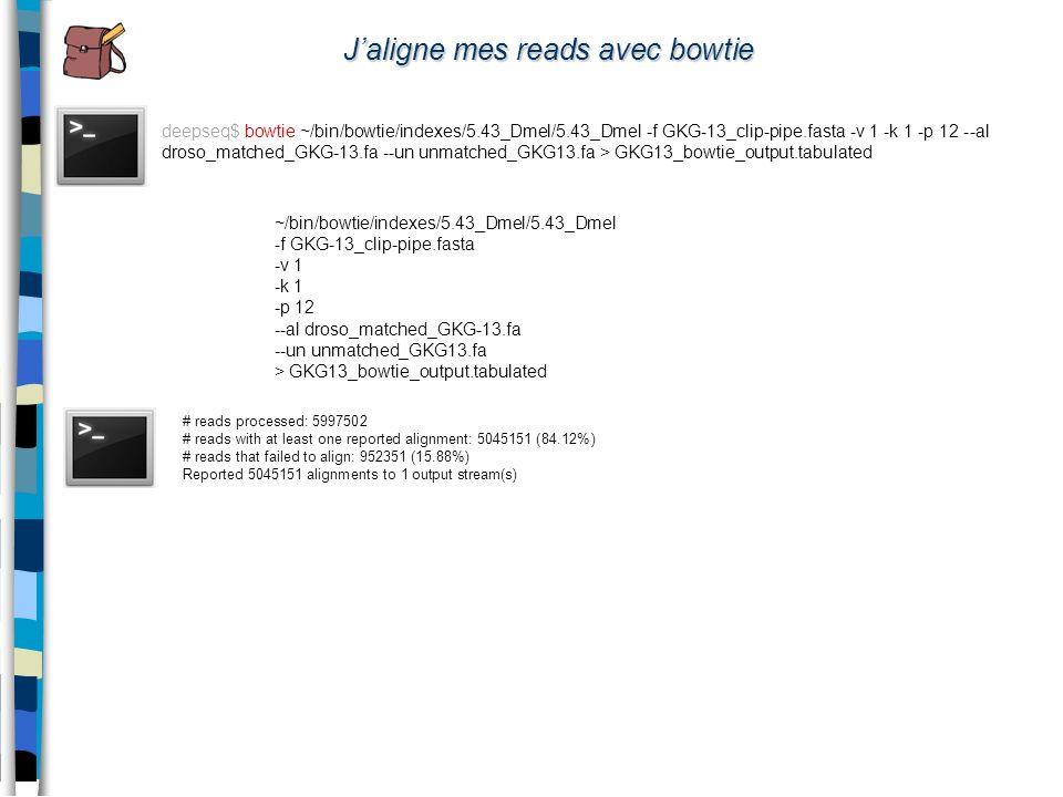 deepseq$ bowtie ~/bin/bowtie/indexes/5.43_Dmel/5.43_Dmel -f GKG-13_clip-pipe.fasta -v 1 -k 1 -p 12 --al droso_matched_GKG-13.fa --un unmatched_GKG13.f