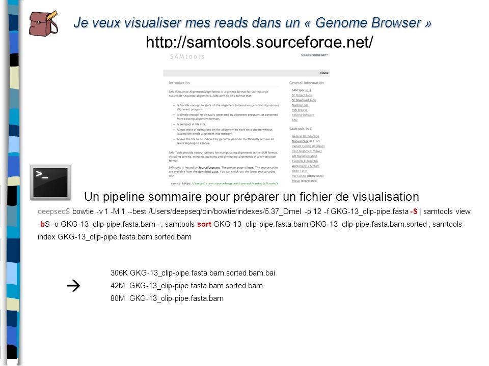 Je veux visualiser mes reads dans un « Genome Browser » http://samtools.sourceforge.net/ Un pipeline sommaire pour préparer un fichier de visualisatio