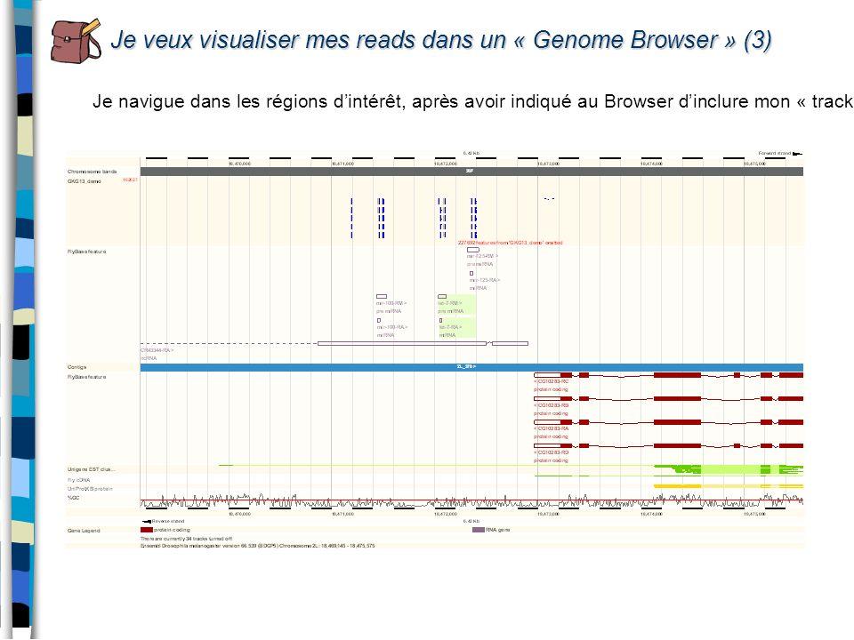 Je veux visualiser mes reads dans un « Genome Browser » (3) Je navigue dans les régions dintérêt, après avoir indiqué au Browser dinclure mon « track