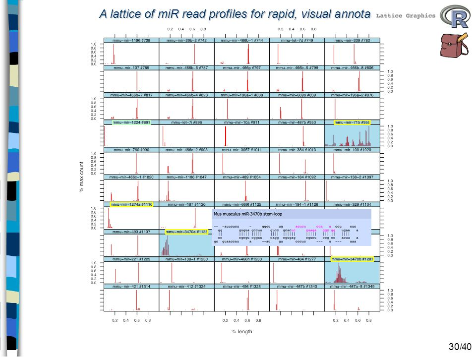 A lattice of miR read profiles for rapid, visual annotation 30/40