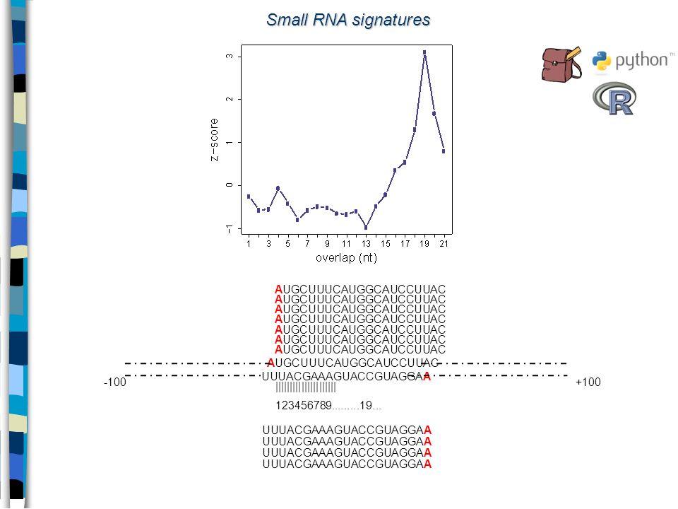 Small RNA signatures AUGCUUUCAUGGCAUCCUUAC UUUACGAAAGUACCGUAGGAA -100+100 AUGCUUUCAUGGCAUCCUUAC UUUACGAAAGUACCGUAGGAA ||||||||||||||||||||| 123456789.