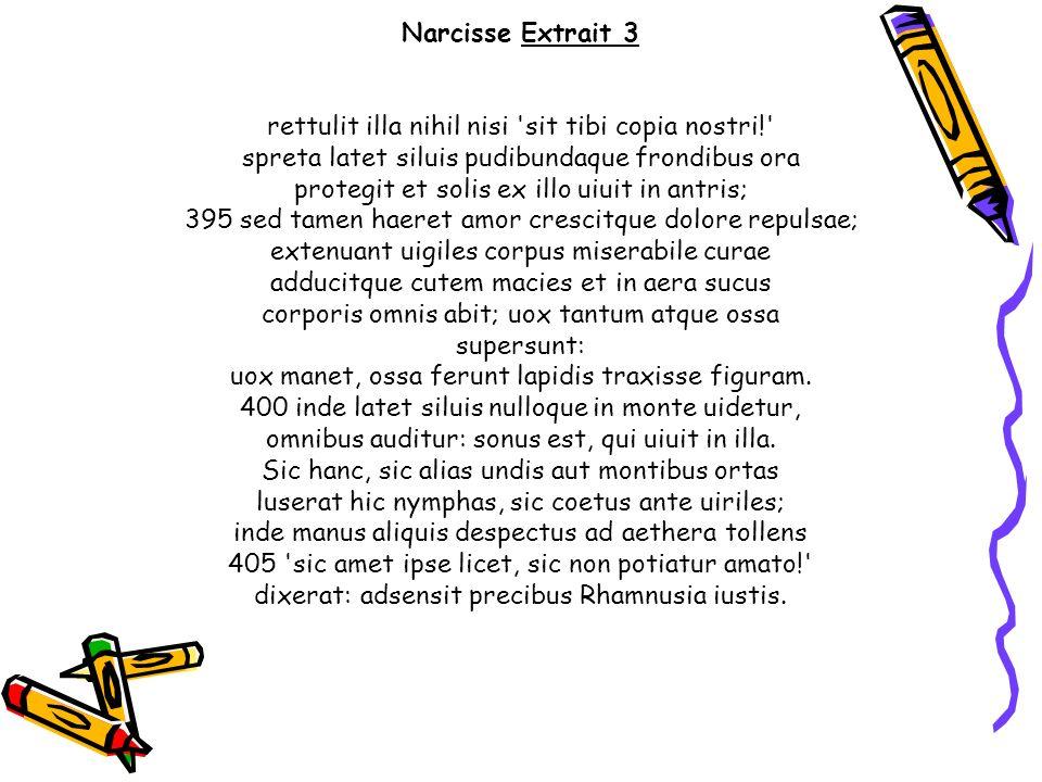 Narcisse Extrait 3 rettulit illa nihil nisi 'sit tibi copia nostri!' spreta latet siluis pudibundaque frondibus ora protegit et solis ex illo uiuit in