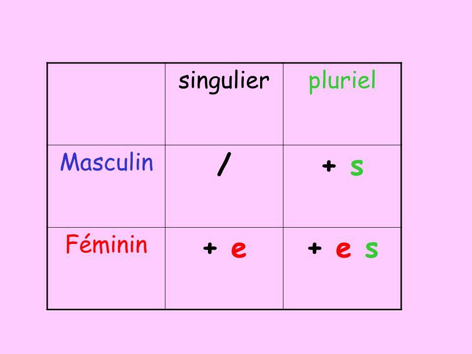 singulierpluriel Masculin /+ s Féminin + e+ e s