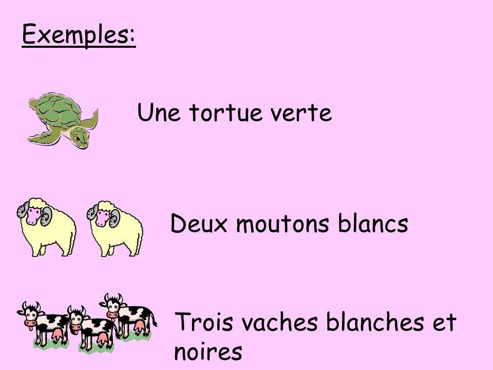 Exemples: Une tortue verte Deux moutons blancs Trois vaches blanches et noires