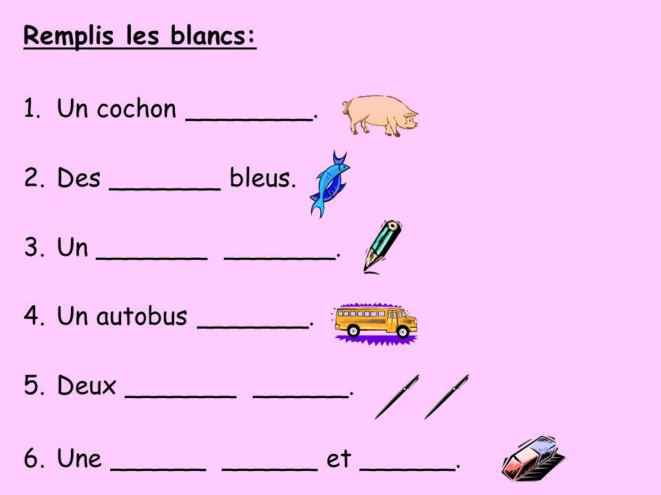 Remplis les blancs: 1.Un cochon ________. 2.Des _______ bleus. 3.Un _______ _______. 4.Un autobus _______. 5.Deux _______ ______. 6.Une ______ ______