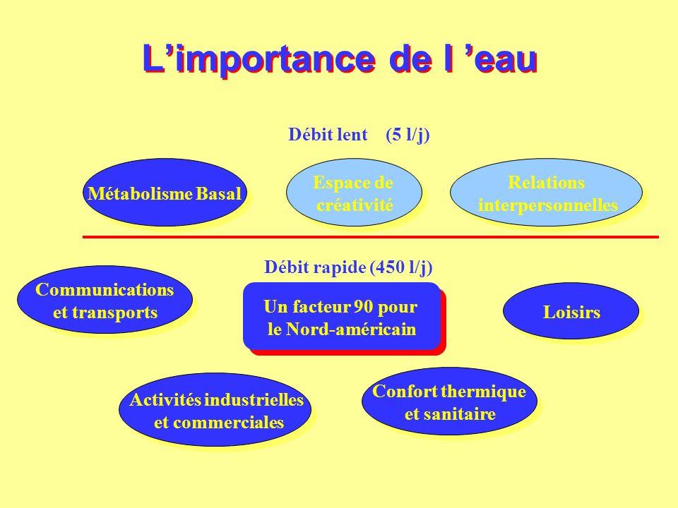 Limportance de l eau Débit lent (5 l/j) Métabolisme Basal Relations interpersonnelles Relations interpersonnelles Espace de créativité Espace de créat