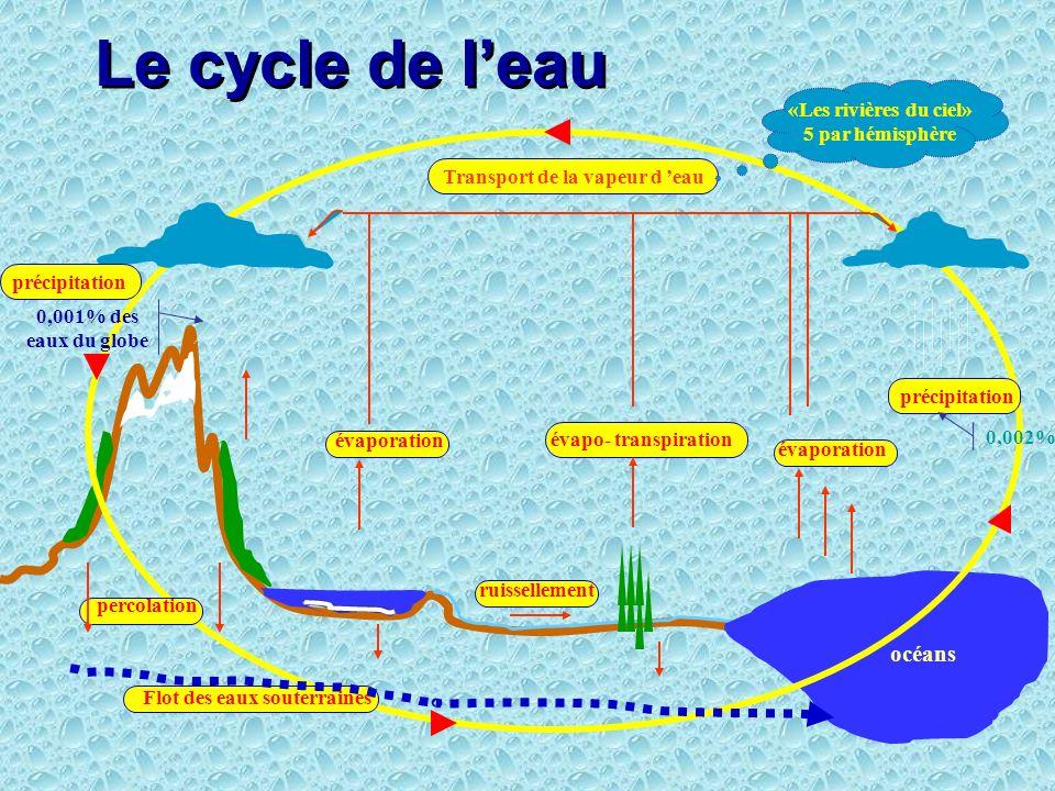 Limportance de leau pour le métabolisme des êtres vivants cest le constituant majeur de lorganisme à toutes les échelles, le cycle de leau assure les fonctions : alimentation ( et transport des nutrients); excrétion (métabolites) et dissémination de la matière organique pour léquilibre des écosystèmes naturels transport de la chaleur des tropiques vers les pôles érosion et transport des minéraux et autres matières inorganiques (cycle de leau)