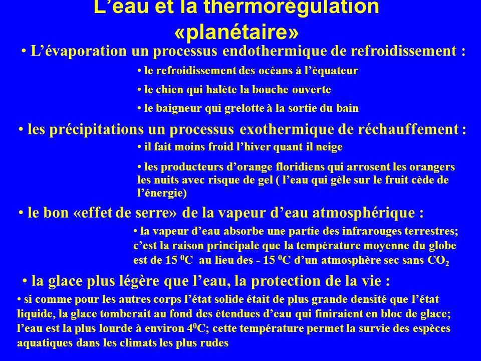 Leau et la thermorégulation «planétaire» Lévaporation un processus endothermique de refroidissement : le refroidissement des océans à léquateur le chi