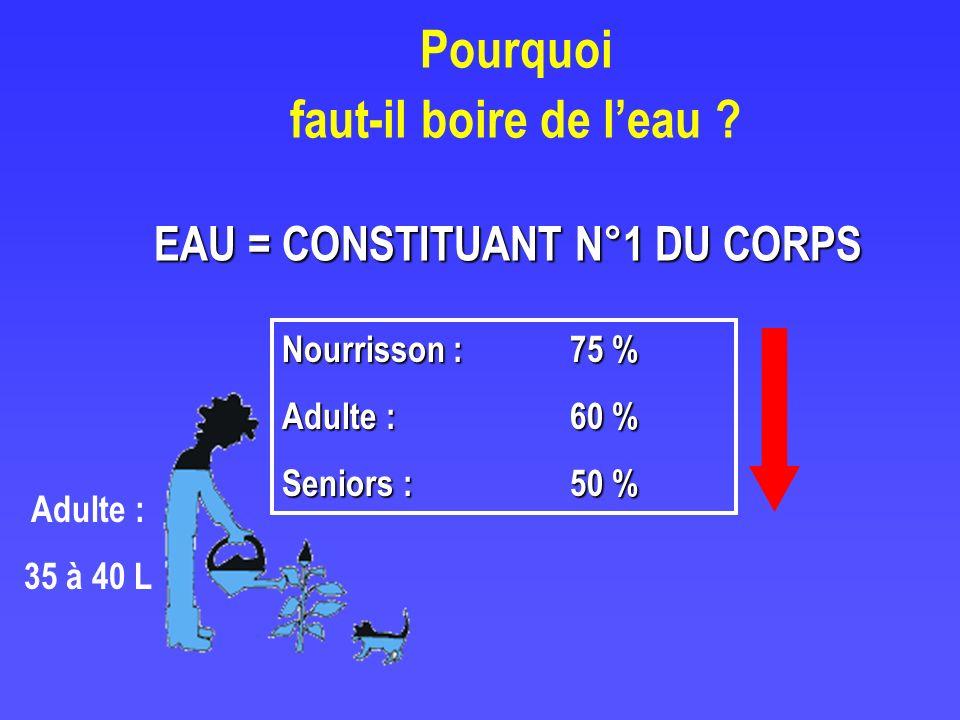 Pourquoi faut-il boire de leau ? Nourrisson : 75 % Adulte : 60 % Seniors : 50 % Adulte : 35 à 40 L EAU = CONSTITUANT N°1 DU CORPS