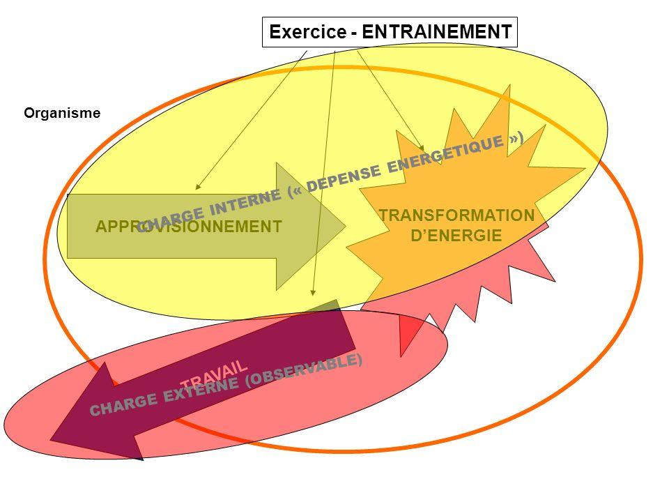 TRANSFORMATION DENERGIE APPROVISIONNEMENT Organisme EXERCICE- ENTRAINEMENT TRAVAIL