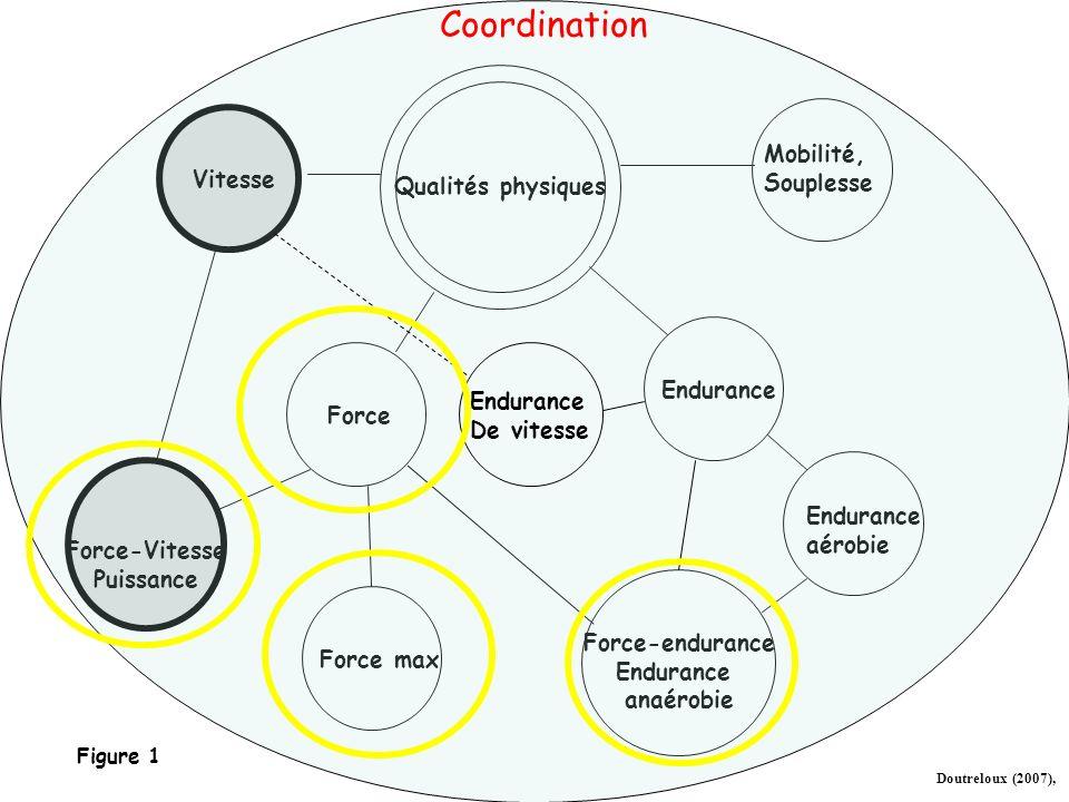 Définitions (suite) Mais aucune capacité nest constituée exclusivement de processus énergétiques ou, à linverse exclusivement de processus centraux de