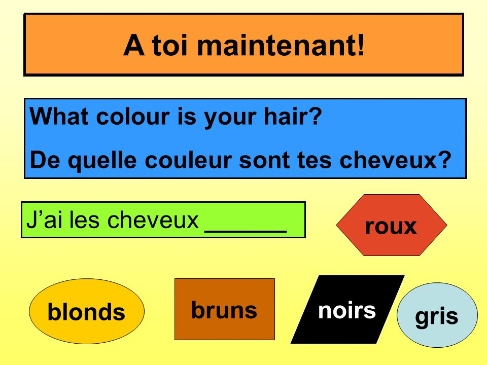 Comment es-tu.What are you like. What colour is your hair.