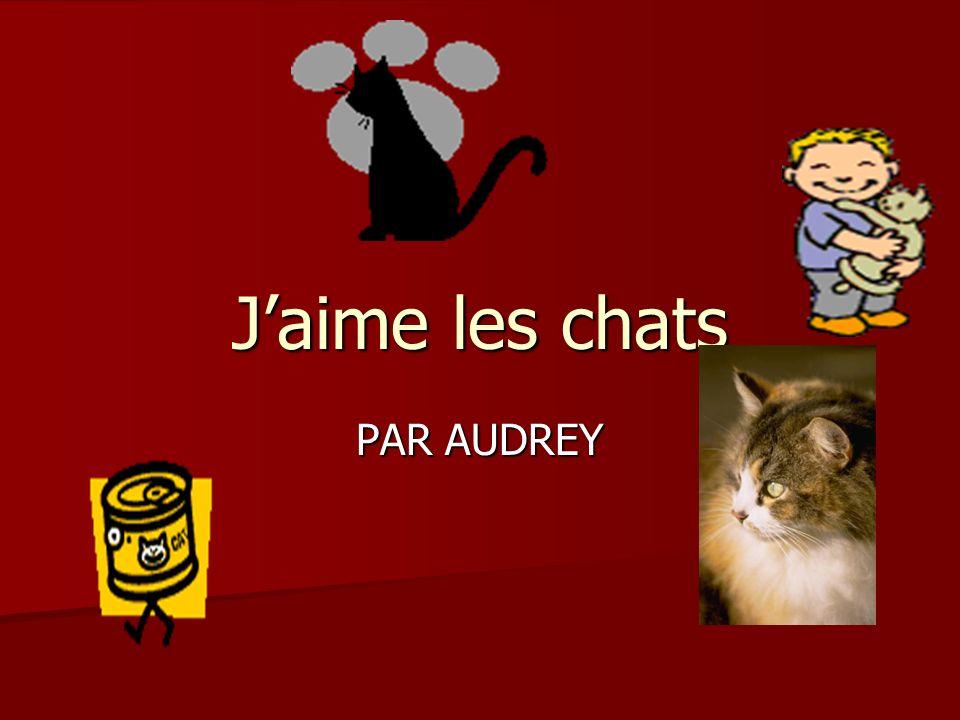 Jaime les animaux Jérémy