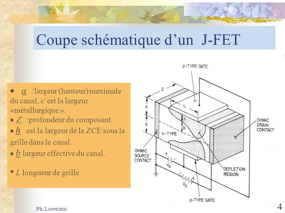 Ph. Lorenzini 4 Coupe schématique dun J-FET a : largeur (hauteur) maximale du canal, cest la largeur «métallurgique ». :profondeur du composant. h est