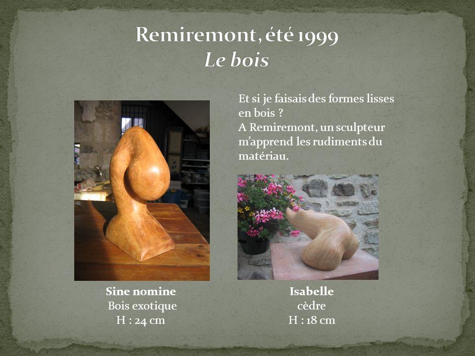 Sine nomine Bois exotique H : 24 cm Et si je faisais des formes lisses en bois ? A Remiremont, un sculpteur mapprend les rudiments du matériau. Isabel