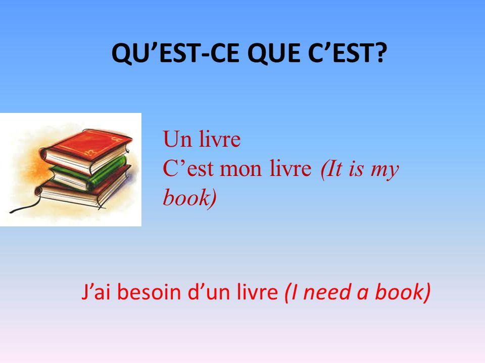 QUEST-CE QUE CEST? Un livre Cest mon livre (It is my book) Jai besoin dun livre (I need a book)