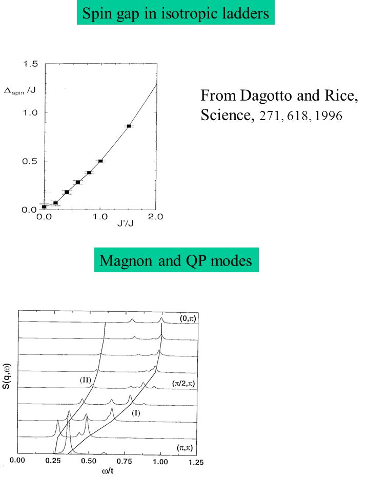 Magnon and QP modes Spin gap in isotropic ladders From Dagotto and Rice, Science, 271, 618, 1996