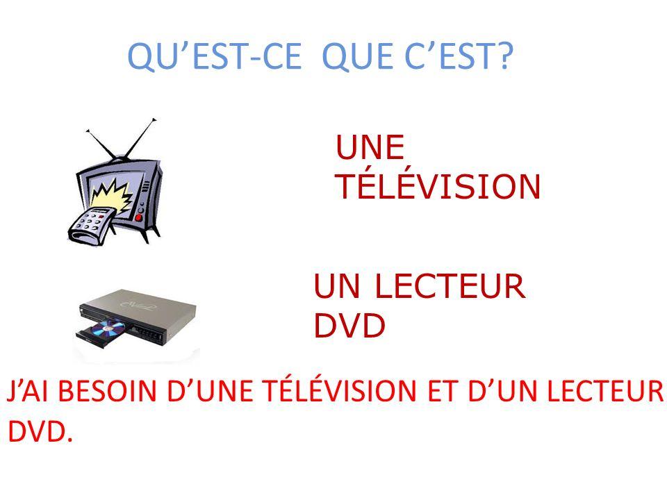 QUEST-CE QUE CEST? UNE TÉLÉVISION UN LECTEUR DVD JAI BESOIN DUNE TÉLÉVISION ET DUN LECTEUR DVD.