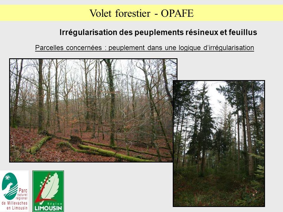 13 Irrégularisation des peuplements résineux et feuillus Parcelles concernées : peuplement dans une logique dirrégularisation Volet forestier - OPAFE