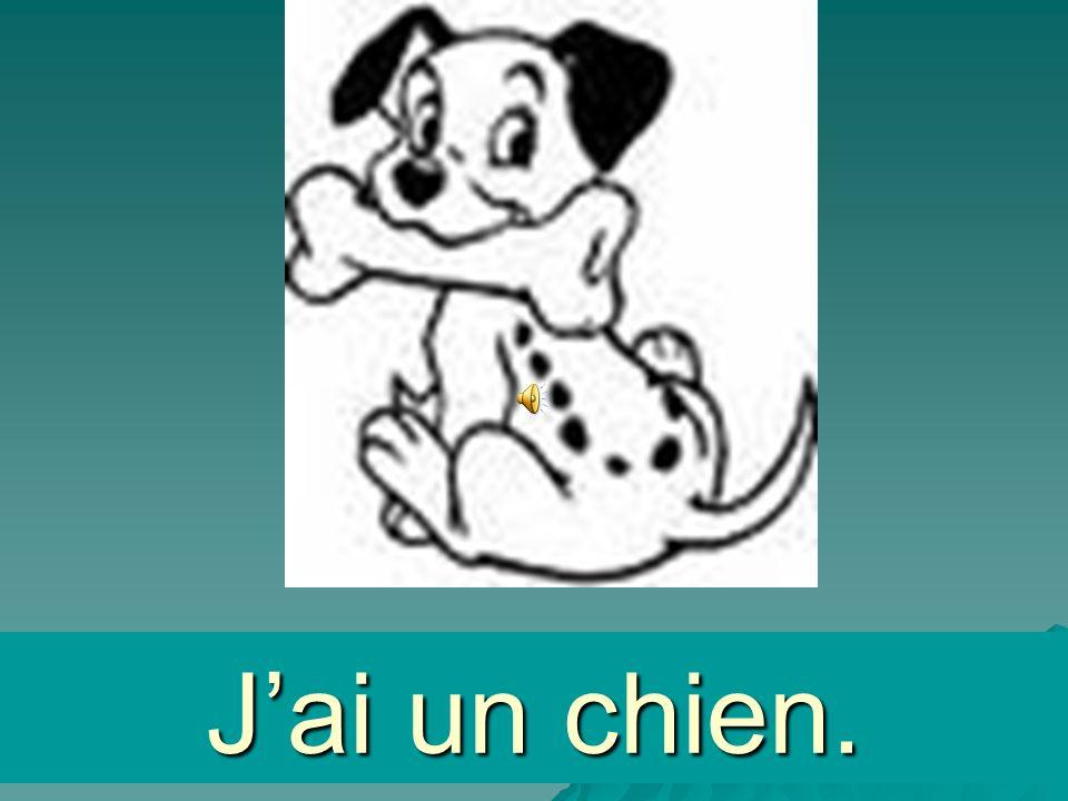 un chien Jai un chien.