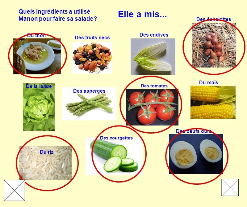 Quels ingrédients a utilisé Manon pour faire sa salade? De la laitue Du maïs Des fruits secs Des asperges Des endives Du thon Des échalottes Des oeufs